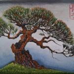 Temple Pine 6