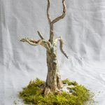 Desiree Engel - Tree #4
